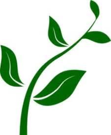 Grow more trees essay for kids - goldenorigincom
